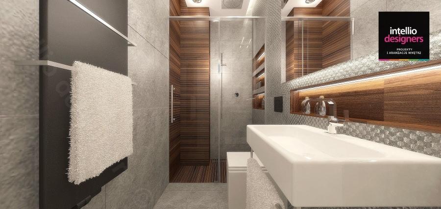Łazienki projekty i aranżacje, łazienka z prysznicem grzejnik Vasco