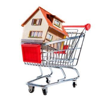 Dom w koszyku, targi mieszkaniowe, koszyk z supermarketu